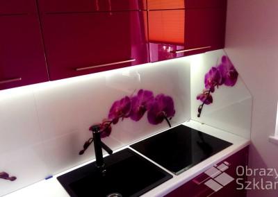 motyw-kwiatowy-na-szklanych-panelach